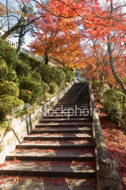 Autumn at Kiyomizu temple